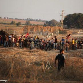 En Direct de Gaza : Un mort et sept blessés au sud de la bande de Gaza