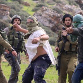 50 ans de régime militaire israélien : les colonies de peuplement et les colons