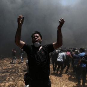 Massacre à Gaza: Déclarations/Communiqués