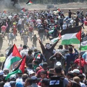 En Direct de Gaza:  7 morts et 250 blessés dans la bande de Gaza-bilan provisoire-:  Ce vendredi 12 octobre 2018:  Gaza se révolte pour Jérusalem !