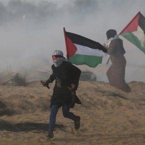 Le patriarcat en Palestine