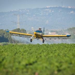 Des groupes de défense des droits humains déclarent : l'épandage par Israël d'herbicides dans Gaza viole la loi internationale