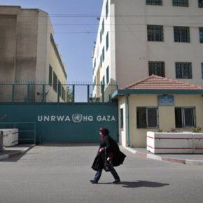Un million de personnes au bord de la famine à Gaza après l'arrêt de l'aide américaine à la Palestine