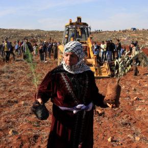 Utiliser l'indigénéité dans le combat pour la libération palestinienne