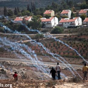 ONU: L'économie palestinienne pourrait doubler sans occupation