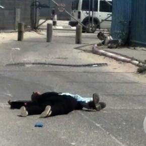 A propos de l'exécution de la jeune maman et de son frère sur le check-point de Qalandiya
